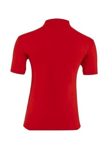 Panthzer  Taftan Polo Yaka Erkek T-Shirt Kırmızı